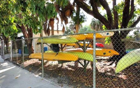 cape coral kayak rental