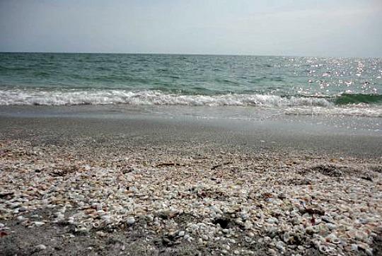 turner beach