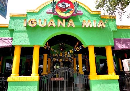iguana mia cape coral