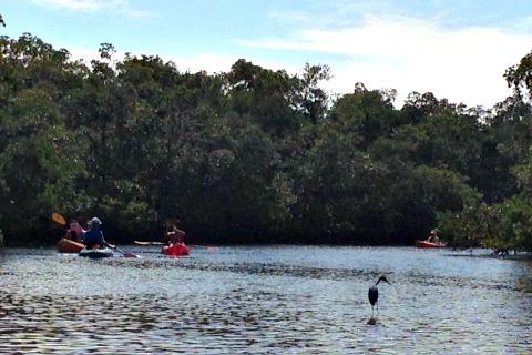 kayak rentals fort myers