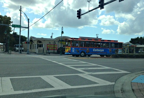 cape coral trolley