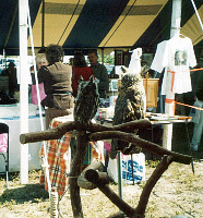 cape coral burrowing owl festival