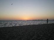 cape coral sunset celebration