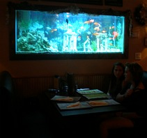 restaurants with aquariums