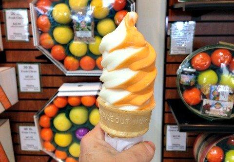 fort myers ice cream
