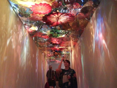 dale chihuly exhibit