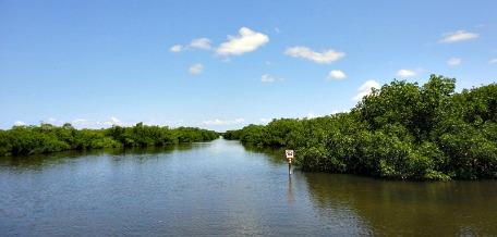airboat rides south florida
