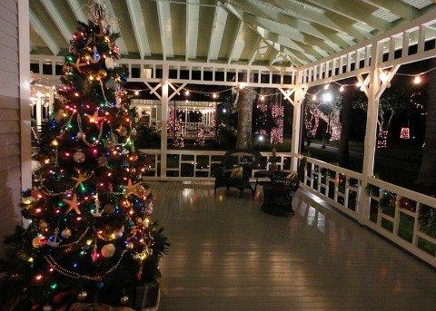edison christmas lights