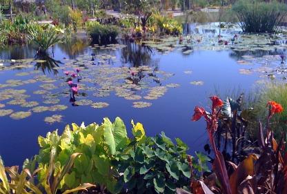 botanical gardens in florida
