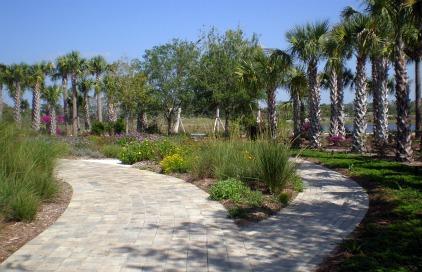 south florida gardening