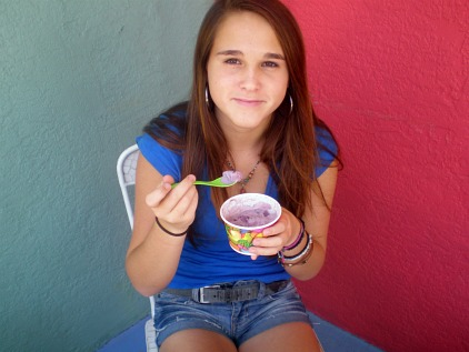homemade ice cream shops